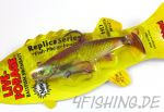 "Northland ""Live-Forage Swimbait"" 4"" GOLDEN SHINER"